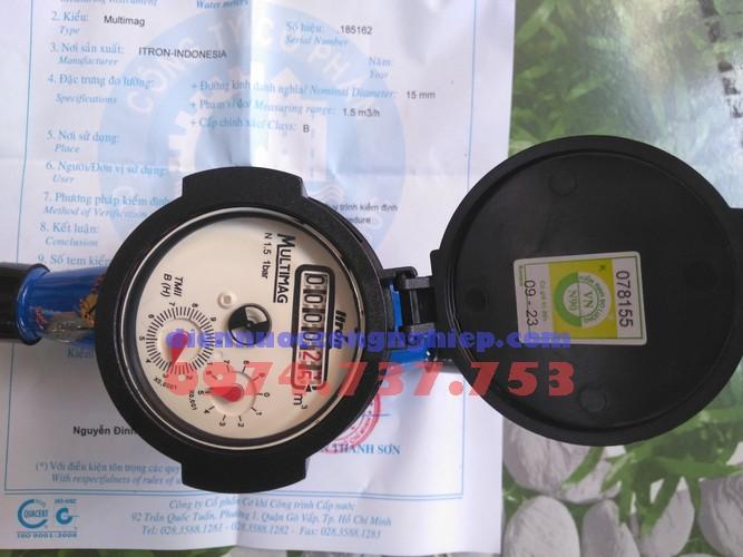 Đồng hồ đo lưu lượng nước Itron - Multimag